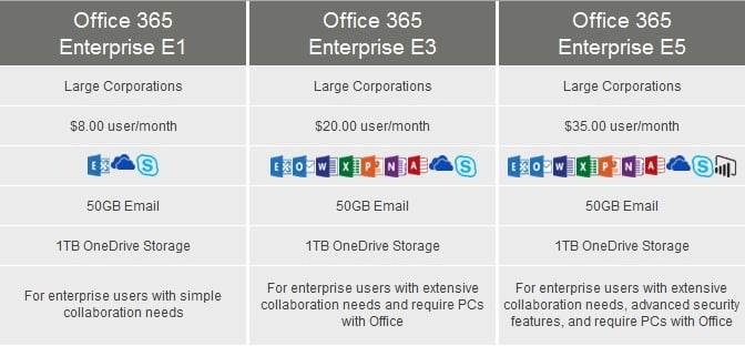Microsoft Office 365 Enterprise Large Business Computer Solutions